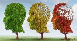 Alzheimer: l'autunno della mente