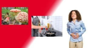 Mushroom poisoning: how to prevent or intervene
