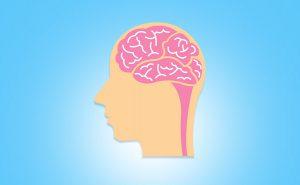 Personalità, cervello e malattie cerebrali
