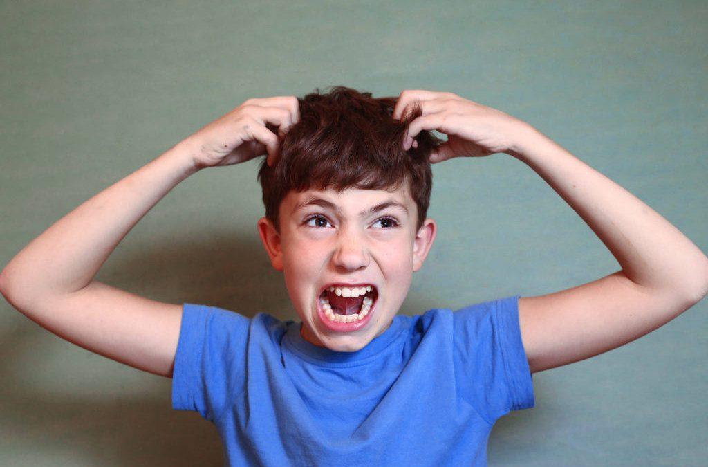 Pidocchi: che cosa ti passa per la testa?