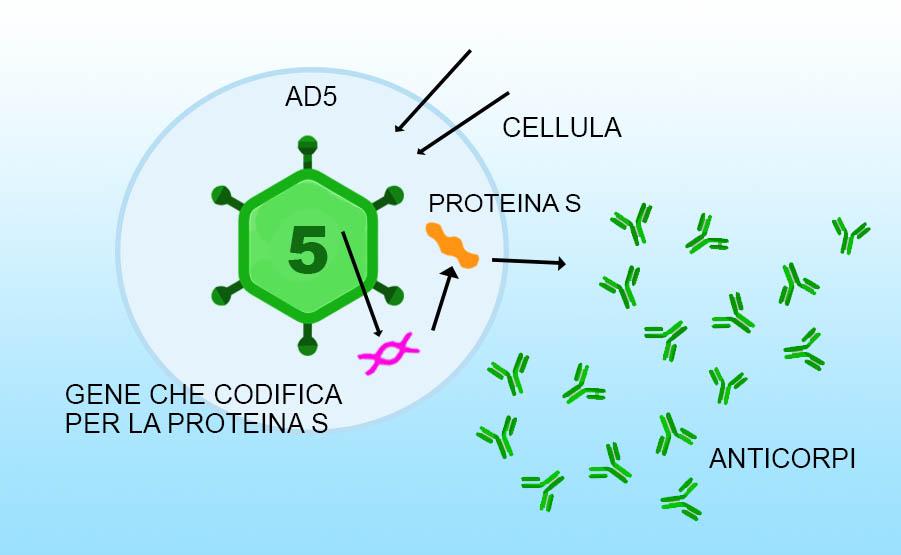 seconda vaccinazione dose vaccino sputnik V con adenovirus 5